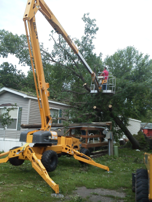 Dks Tree Amp Landscaping Llc Landscaping Tree Removal And